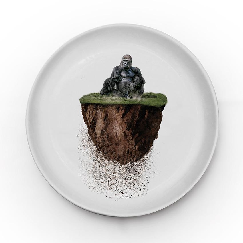 Ceramic Animal Plates