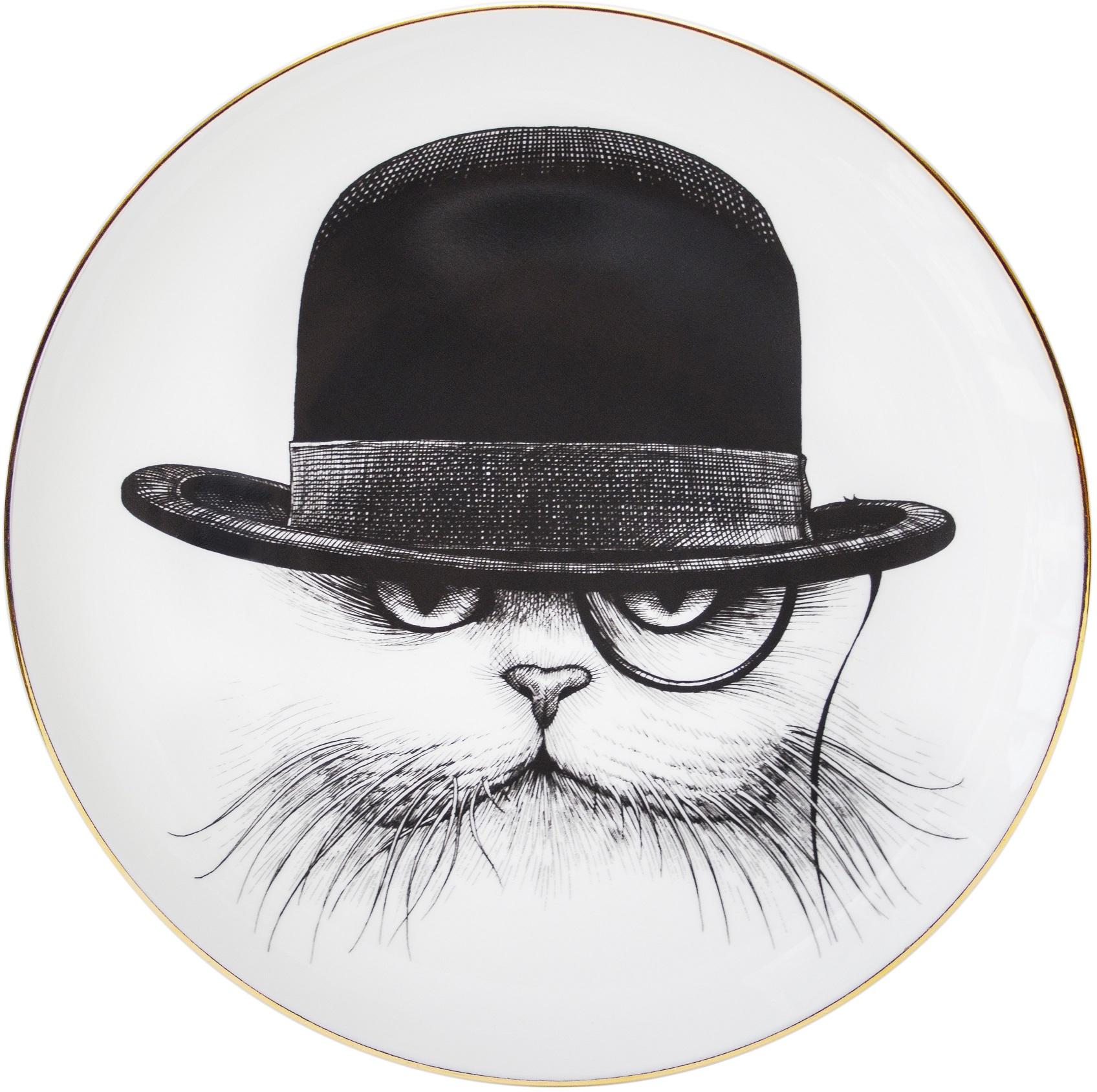 Cat Hat Down