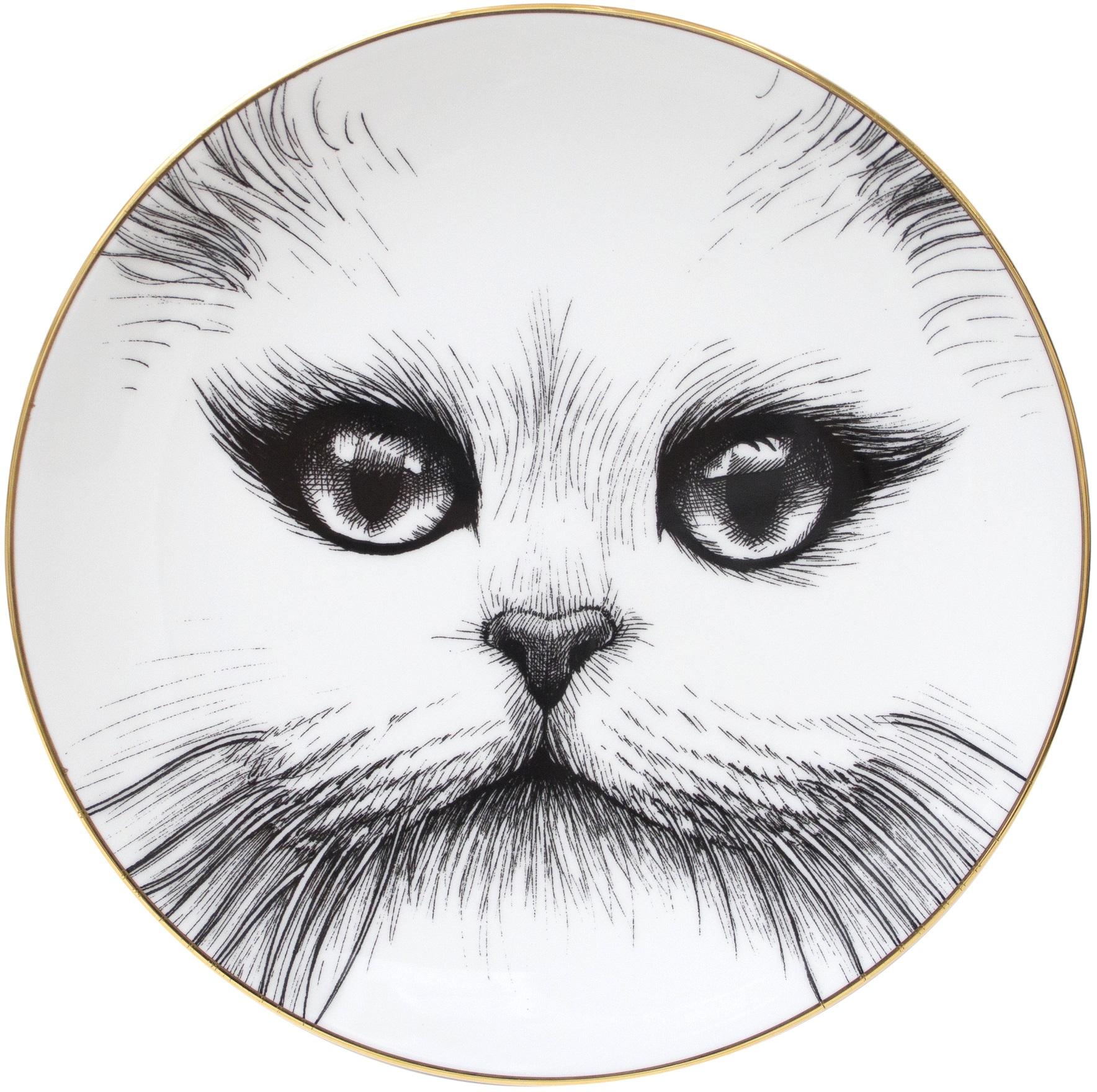 Cat No Monocle